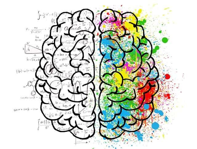 Curso de inteligencia emocional; Aprende a Controlar tus Emociones