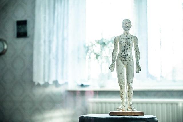 Curso osteopatía