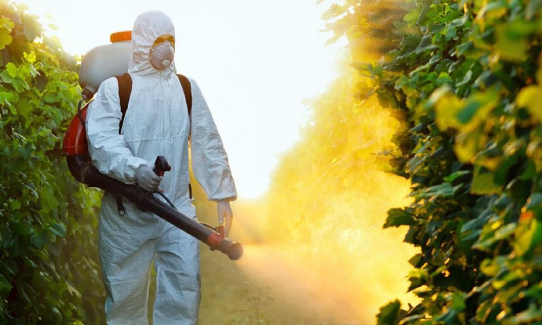 curso fitosanitario
