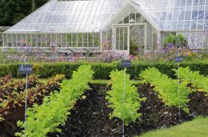 Cursos de jardinería